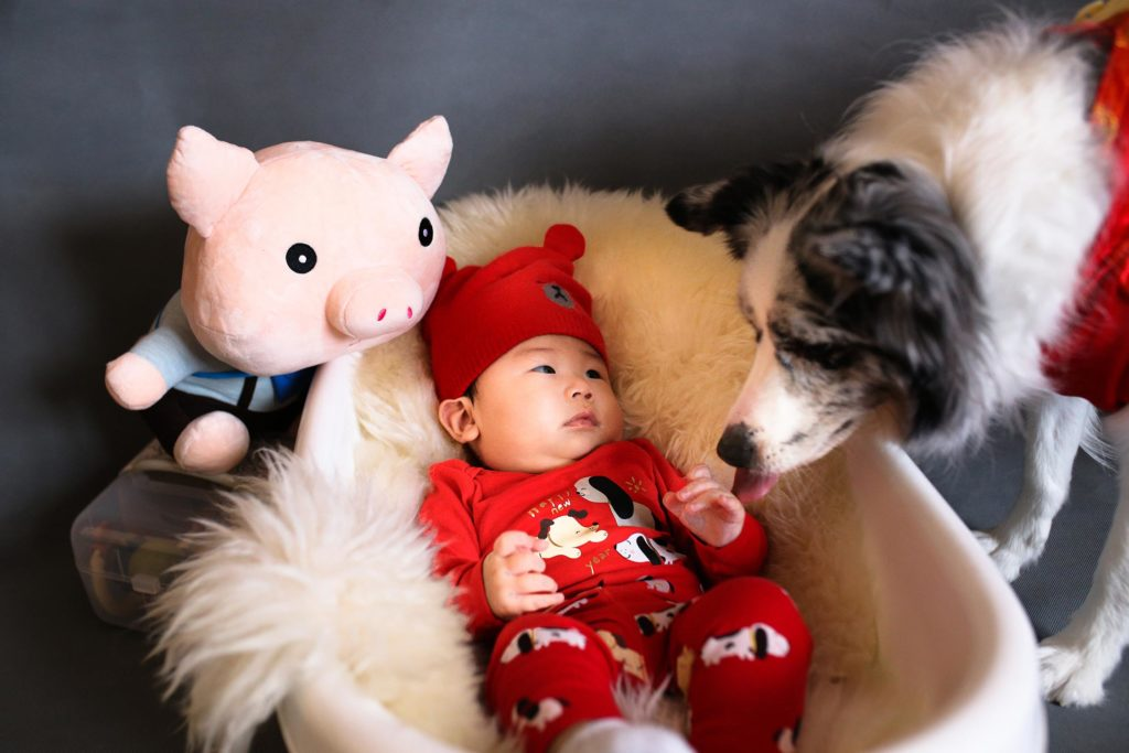 baby i krybbe med hund der snuser